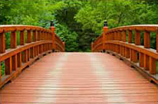 Chinese Medicine Bridge to Healing